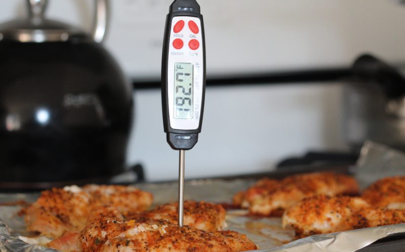Instant Thermometer, Food Borne Illness, Basics of Safe Food Handling