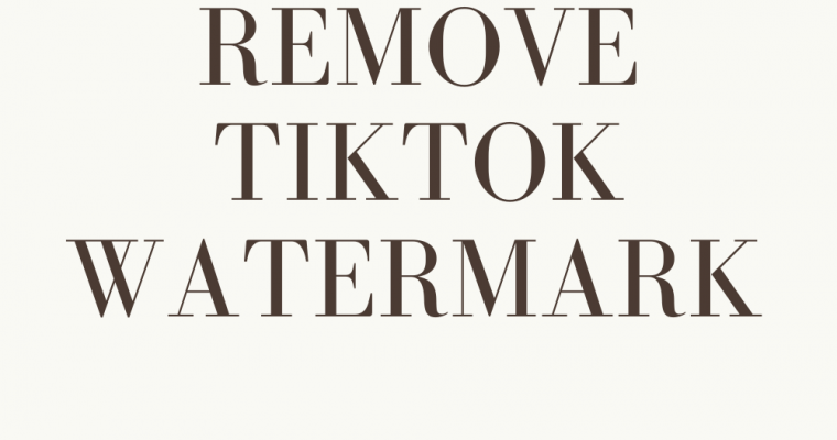 How To Remove TikTok Watermark on Videos